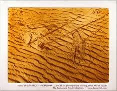 Sands of the Gobi (1)