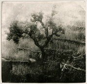 Photogravure etchings at http://kamprint.com/ & http://kamprint.com/xpress/
